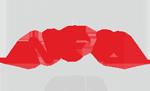 AONI.pl Logo